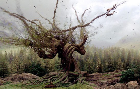 Whomping willow endangering students in Harry Potter