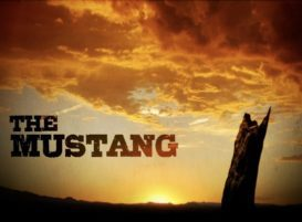 The Mustang Banner Image