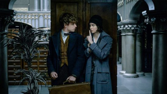 Newt and Tina from Fantastic Beasts and Where to Find Them
