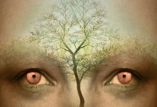 The Dreaming Tree – Mythcreants