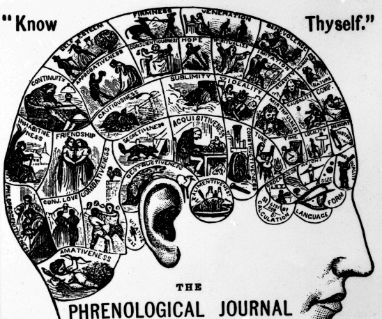 A phrenology chart.