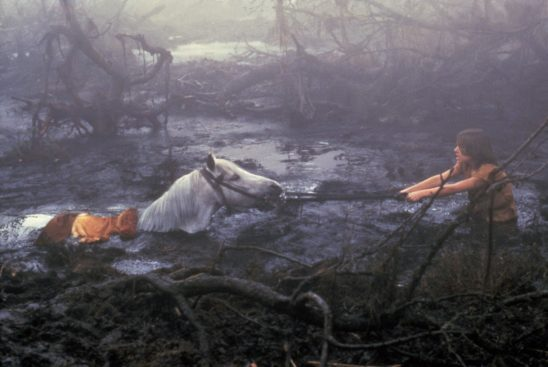 Artax sinking into the swamp from the Neverending Story