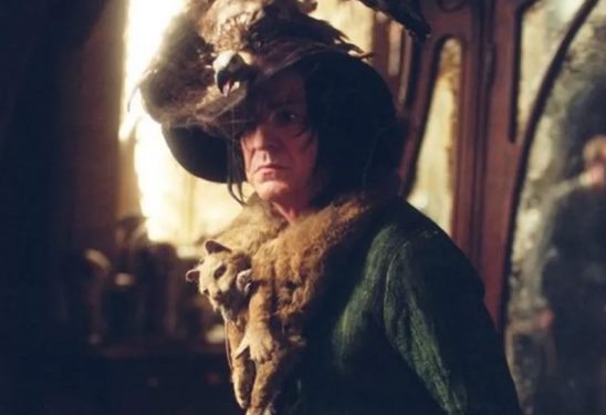 Snape from Harry Potter wearing grandma clothes