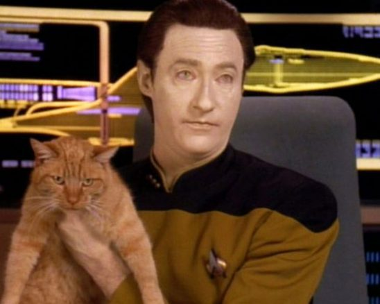 Data holding his pet spot from Star Trek: The Next Generation.