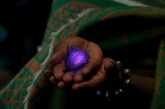 A woman holds out a glowing purple plant pod.