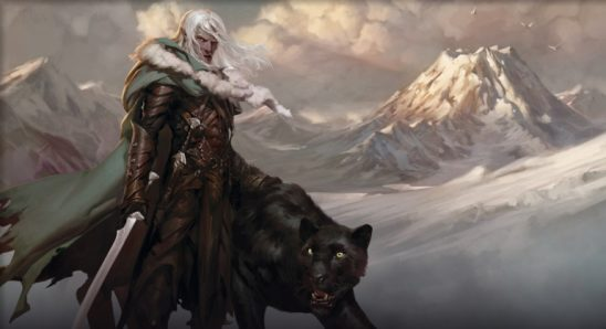 A Drow ranger with a panther animal companion.