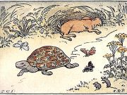 The tortoise smiles as it passes the sleeping hare