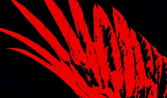 The red wing symbol from Red Rising.